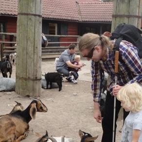 En synskadad familj besöker en djurpark.